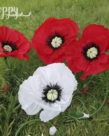 Прекрасното цвете мак от хартия Poppy